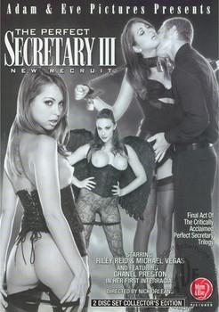 The Perfect Secretary 3 : New Recruit
